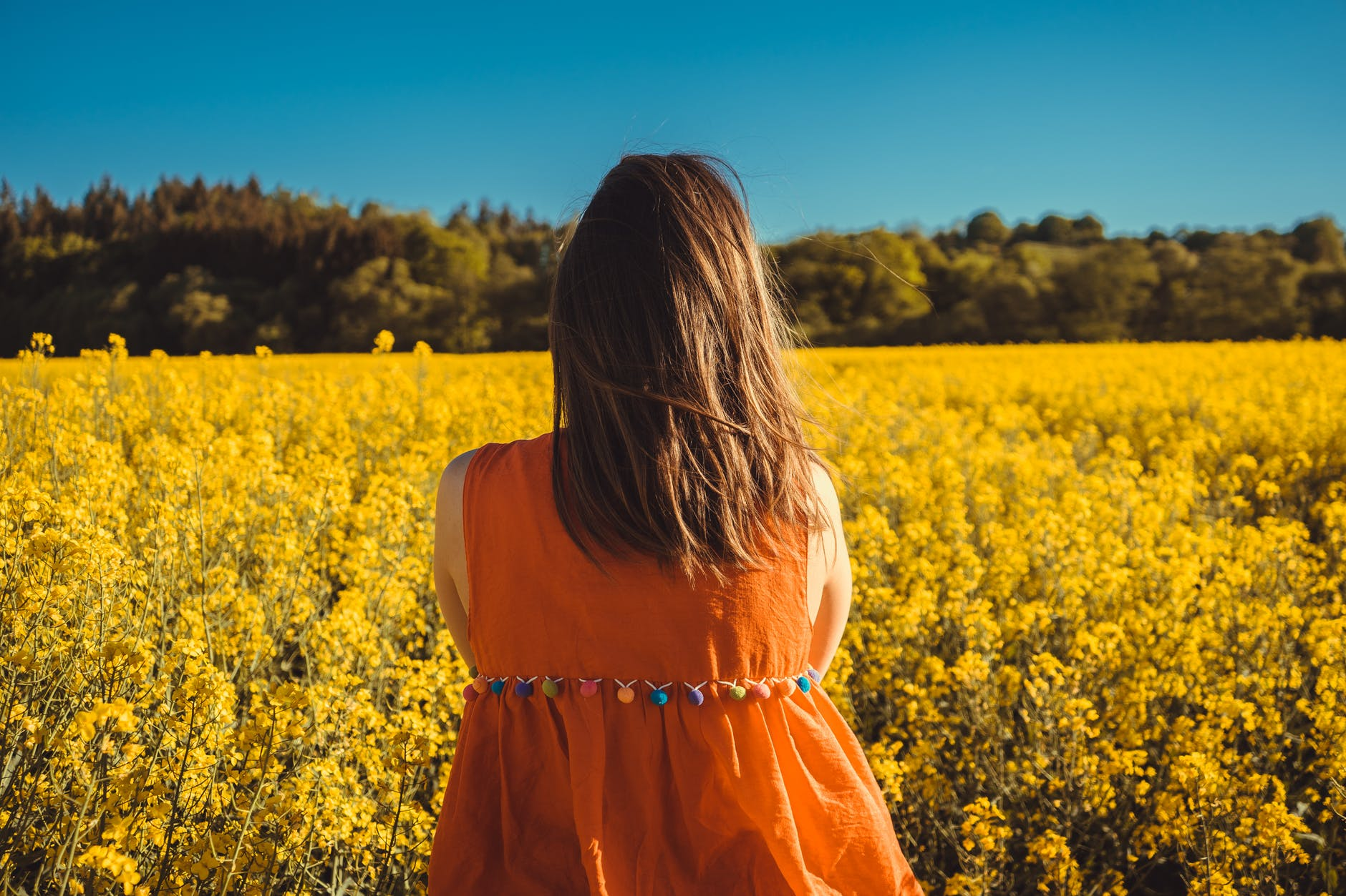 photo of woman looking at a flower field
